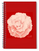 Rose On Red Spiral Notebook