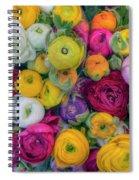 Rose Petals Spiral Notebook