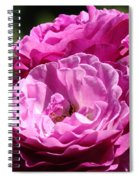 Rose Pink Purple Roses Flowers 1 Rose Garden Sunlit Flowers Baslee Troutman Spiral Notebook