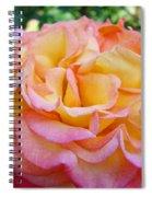 Rose Pink Yellow Rose Flower 2 Rose Garden Giclee Prints Baslee Troutman Spiral Notebook