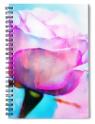 Rose Soft Pink Silked In Thick Paint Spiral Notebook
