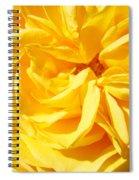 Rose Spiral Flower Garden Baslee Troutman Spiral Notebook