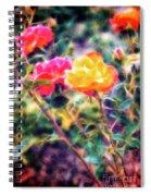 Rose Sweet Spiral Notebook