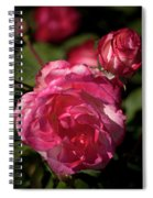 Rose To The Occasion Spiral Notebook