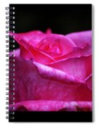 Rose Tryptich Spiral Notebook