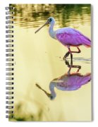 Roseate Spoonbill At Sunrise Spiral Notebook