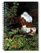 Rosehips For Dessert Spiral Notebook