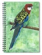 Rosella Spiral Notebook