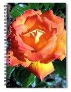 Roses 1 Spiral Notebook