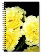 Roses 11 Spiral Notebook