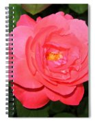 Roses 12 Spiral Notebook