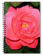 Roses 12 Spiral Notebook