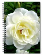 Roses 2 Spiral Notebook