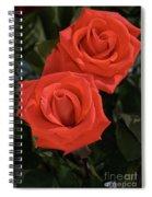 Roses-5840 Spiral Notebook
