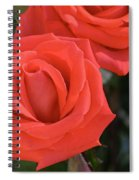 Roses-5850 Spiral Notebook