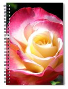 Roses 7 Spiral Notebook