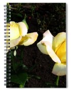 Roses 8 Spiral Notebook