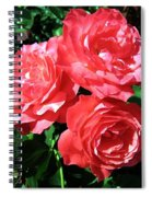 Roses 9 Spiral Notebook