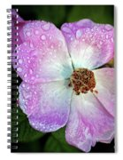 Roses After The Rain Spiral Notebook
