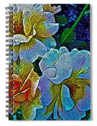 Roses Aglow Spiral Notebook