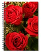 Roses Are Red Spiral Notebook