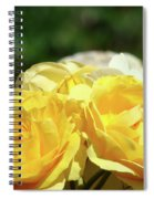 Roses Art Prints Canvas Sunlit Yellow Rose Flowers Baslee Troutman Spiral Notebook