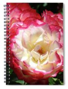 Roses Art Prints Pink White Rose Flowers Gifts Baslee Troutman Spiral Notebook