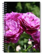 Roses Art Rose Garden Pink Purple Floral Prints Baslee Troutman Spiral Notebook