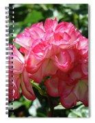 Roses Bouquet Pink White Rose Flowers 2 Rose Garden Baslee Troutman Spiral Notebook