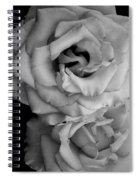 Roses In Black And White Spiral Notebook