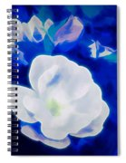 Roses In Bllue Spiral Notebook