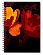Roses In Molten Gold Art Spiral Notebook