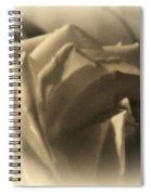 Roses In Moonlight 3 Spiral Notebook