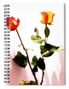 Roses In The Light Spiral Notebook