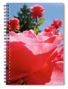 Roses Pink Rose Landscape Summer Blue Sky Art Prints Baslee Troutman Spiral Notebook