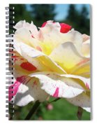 Roses White Pink Yellow Rose Flowers 3 Rose Garden Art Baslee Troutman Spiral Notebook