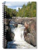 Rosetone Falls Spiral Notebook