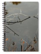 Rosey Bridge Spiral Notebook