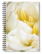 Rosey Tulip Spiral Notebook