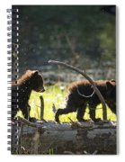 Rosie And Cubs Spiral Notebook