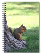Roswell Squirrel Spiral Notebook