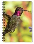 Rosy Cheeks Spiral Notebook