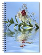 Rosy Reflection  Spiral Notebook