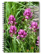 Rosy Wildflowers Spiral Notebook