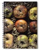 Rotten Apples Spiral Notebook