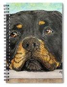 Rottweiler's Sweet Face 2 Spiral Notebook