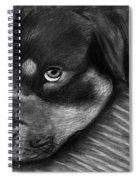 Rotty Spiral Notebook
