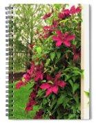 Rouge Cardinal Clematis 2 Spiral Notebook