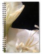 Rough Around The Edges Spiral Notebook