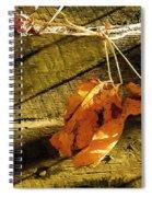 Rough-cut Wall Spiral Notebook